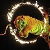 Цирки в Солнечногорске
