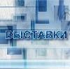Выставки в Солнечногорске